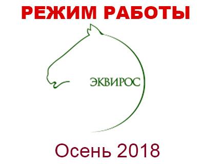 Режим работы конного магазина igogo.club на Новогодних Праздниках 2018