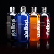 Gallop Colour-Chestnut & Palomino / Шамп. для яркости окр. (рыжий) 500мл