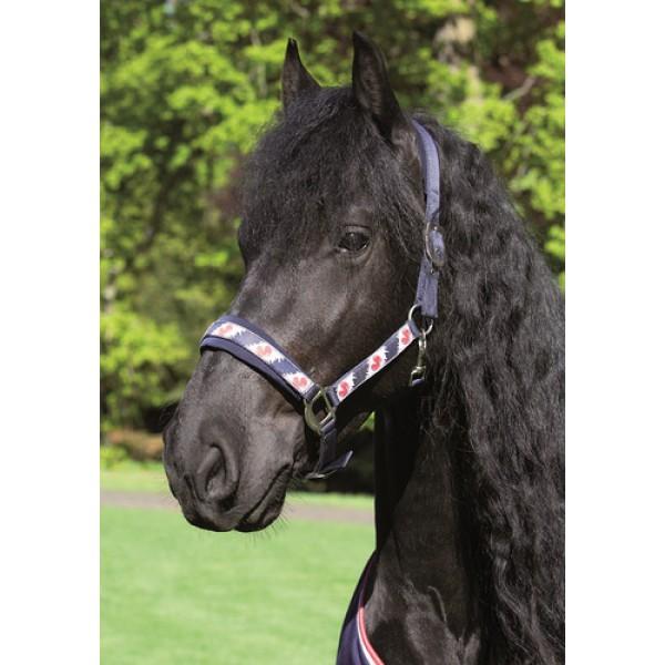Недоуздок с чомбуром Friesian Harrys Horse