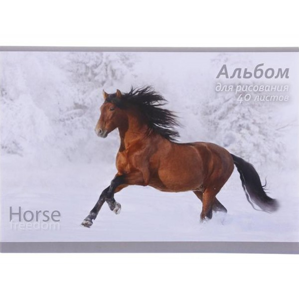 Альбом для рисования А4 Horse freedom