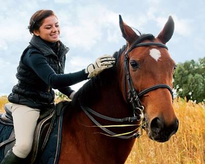 Средства для удобного обращения с лошадью