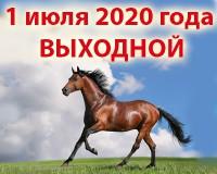 1 июля выходной у конного магазина igogo.club