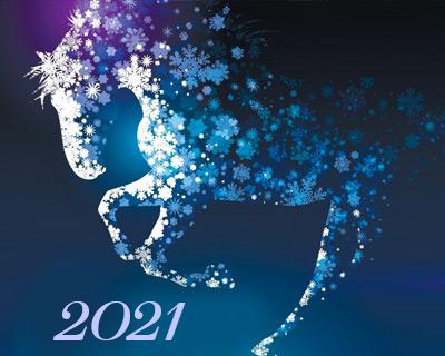 Режим работы конного магазина igogo.club на НГ праздниках 2021