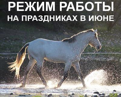 Режим работы конного магазина igogo.club на праздниках в июне 2021