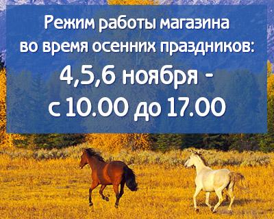 Режим работы конного магазина на осенних праздниках 2017