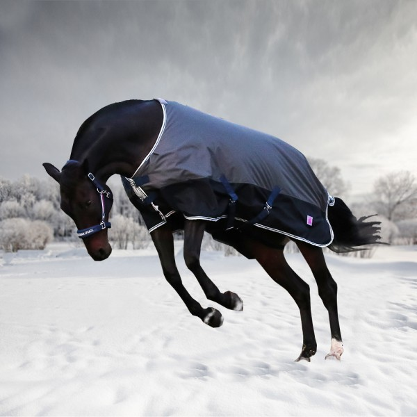 Попона зимняя HORSE ONE Simple Winter, 600 DEN, 300 гр/м, без капора